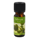 Fragrance Oil Mint (10ml)