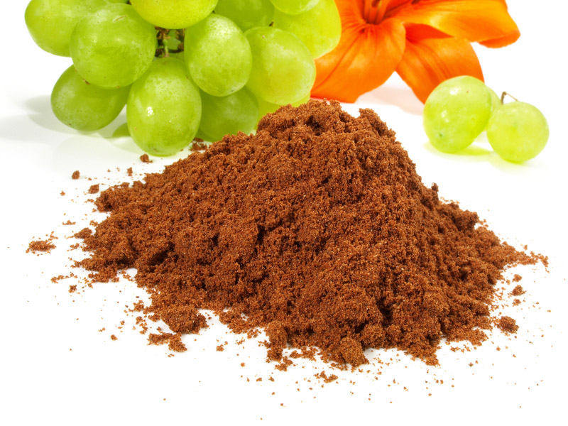OPC grape seed extract powder